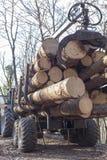 Parte posterior del transporte cargada con madera Imágenes de archivo libres de regalías