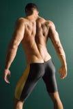 Parte posteriore atletica muscolare del costruttore di corpo Immagini Stock