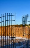 Parte posteriore del giunco dell'oro dai portoni aperti del ferro battuto fotografia stock libera da diritti