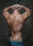 Parte posteriore del maschio Immagine Stock