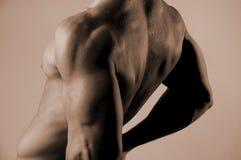 Parte posteriore del maschio Immagini Stock Libere da Diritti