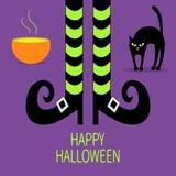 Parte posteriore dell'arco del gatto Pozione verde del calderone Gambe della strega con i calzini e le scarpe a strisce Halloween Immagini Stock