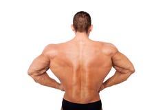 Parte posteriore enorme del culturista sugli steroidi fotografie stock