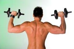 Parte posteriore muscolare. Fotografia Stock