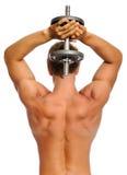 Parte posteriore muscolare di athelete Immagini Stock