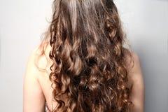 Parte posteriore posteriore di vista laterale di giovani capelli ricci femminili Fotografia Stock