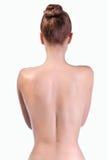 Parte posteriore sana Immagine Stock