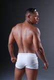 Parte posteriore sexy. fotografia stock libera da diritti