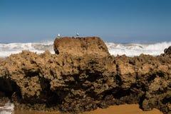 Parte rochosa da costa de Oceano Atlântico, Marrocos fotografia de stock royalty free
