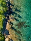 Parte superior abaixo da ideia o do litoral de Maui com sombras longas da palmeira imagem de stock