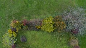 Parte superior abaixo da vista aérea da cerca do jardim coberto de vegetação com os arbustos e as árvores vídeos de arquivo