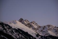 Parte superior bávara da montanha dos cumes no inverno na noite fotografia de stock