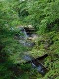 A parte superior cai no parque estadual dos montes de Hocking imagens de stock royalty free