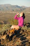 Parte superior da fuga do deserto Fotografia de Stock