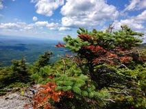 Parte superior da montagem Abraham, Vermont Imagem de Stock Royalty Free