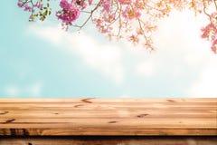 Parte superior da tabela de madeira com a flor cor-de-rosa da flor de cerejeira no fundo do céu Fotos de Stock Royalty Free