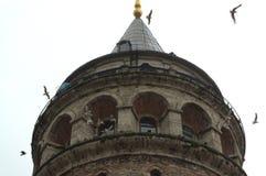 Parte superior da torre de Galata Imagem de Stock Royalty Free