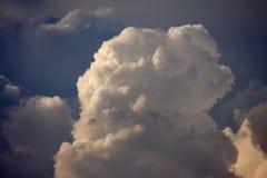 Parte superior de nuvem do Cumulus imagem de stock royalty free