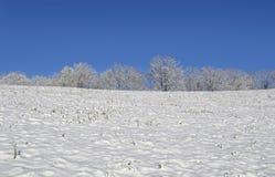 Parte superior de um monte coberto de neve Fotos de Stock