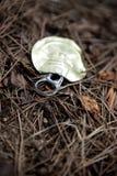 Parte superior de uma lata sobre um assoalho da floresta Imagens de Stock