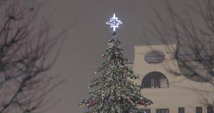 A parte superior do abeto vermelho do Natal video estoque