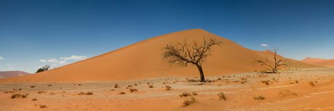 Parte superior do panorama da duna 45 em Sossusvlei Imagens de Stock