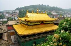 Parte superior dourada do templo de Taer Fotos de Stock Royalty Free
