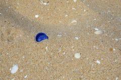 Parte superior plástica da garrafa na praia foto de stock royalty free
