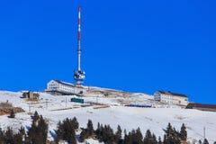Parte superiore del Mt Rigi in Svizzera nell'inverno Fotografie Stock