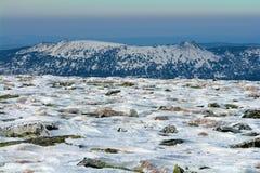 Parte superiore della neve Immagine Stock