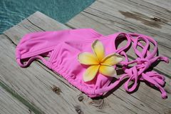 Parte superiore di bikini Fotografie Stock Libere da Diritti