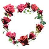 Parte superiore a forma di del cuore delle rose rosse Immagine Stock