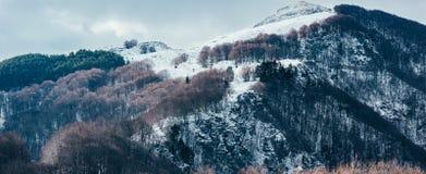 Parte superiore innevata della montagna Fotografie Stock
