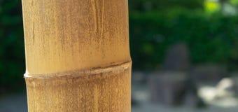 Parte tagliata di un supporto fatto di bambù contro un fondo deliberatamente vago immagine stock