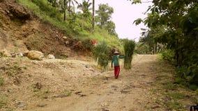 Parte traseira levando da grama do homem indonésio local sobre filme