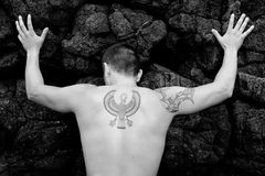 Parte traseira masculina do modelo Foto de Stock