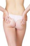 Parte traseira 'sexy' Foto de Stock