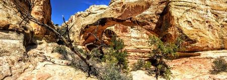 Parte trasera del arco del puente de Hickman en el parque nacional del filón del capitolio, Utah, los E.E.U.U. Fotografía de archivo