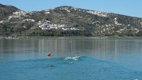 Partecipando ad un nuoto di triathlon in un lago stock footage