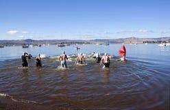Partecipanti che avviano la gamba di nuoto del triathlon su Midmar Da Immagini Stock Libere da Diritti