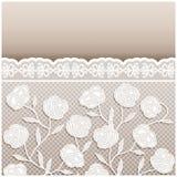 Partecipazione di nozze beige di stile d'annata con gli ornamenti del pizzo Immagine Stock