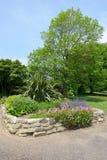 Parterre avec les fleurs sauvages dans le jardin public Images libres de droits