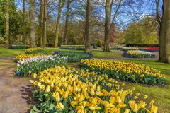 Parterre dans le jardin de Keukenhof, Nederlands Photographie stock