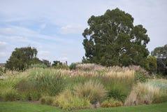 Parterre de jardins de Kew photographie stock