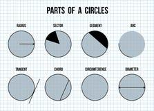 Partes de círculos en fondo del papel de la matemáticas stock de ilustración