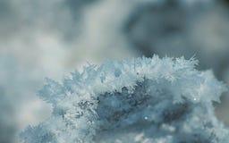 Partes de gelo Imagens de Stock Royalty Free