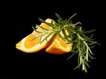 Partes de laranja e de rosemary Fotografia de Stock Royalty Free