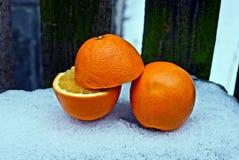 Partes de laranja na jarda na neve foto de stock royalty free