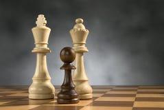 Partes de madeira do jogo de xadrez fotografia de stock