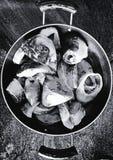 Partes de peixes cruas imagem de stock royalty free